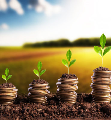 What Is Lead Nurturing? Why Does It Matter?